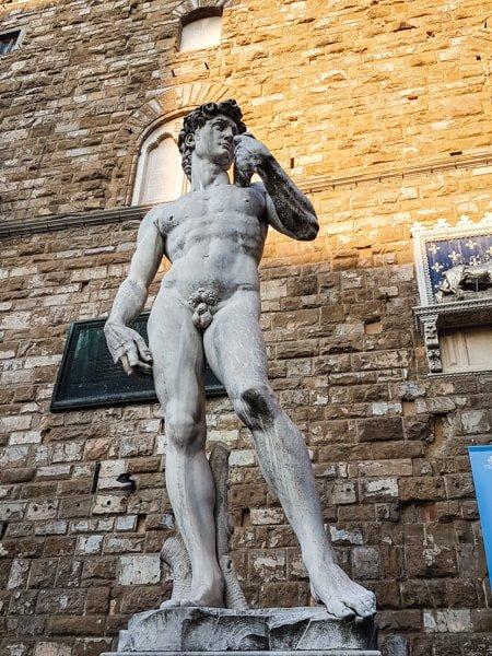 Michelangelo_socha_Davida_florencia
