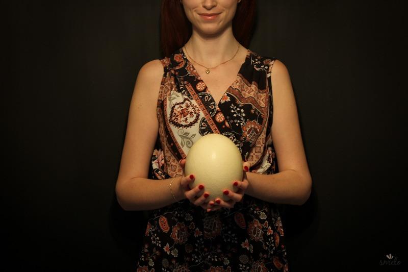 veľkonočne_pstrosie_vajce