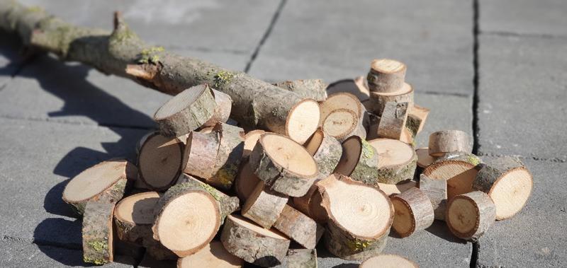 Takto vyzerali drevené krúžky po napílení